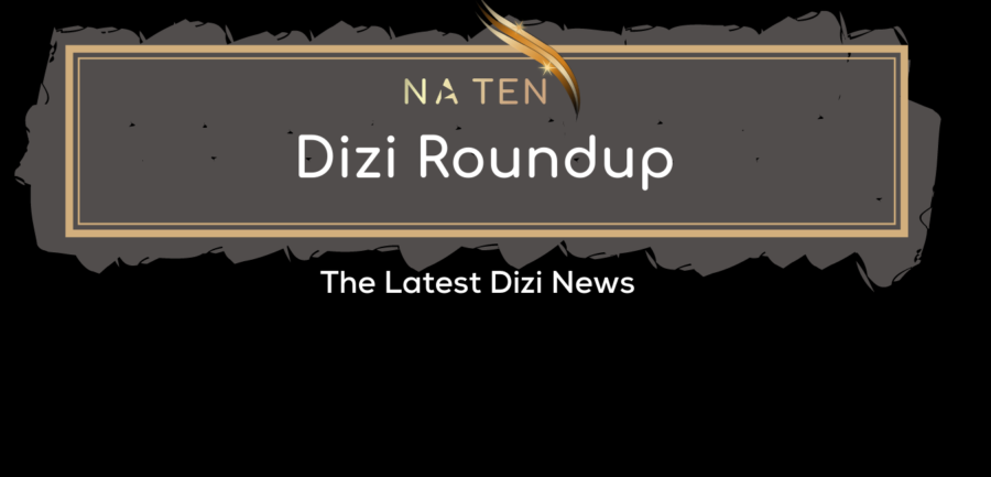 Dizi Roundup: Winter 2020/2021