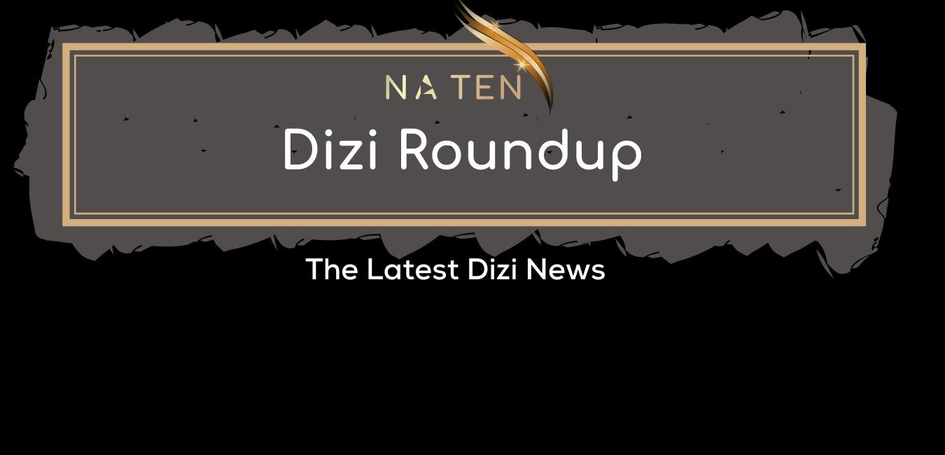 Dizi Roundup: Winter 2020/2021